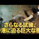 映画『イップ・マン外伝 マスターZ』≪スペシャル予告映像(本予告)≫