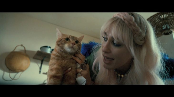 映画『ボブという名の猫 幸せのハイタッチ』予告