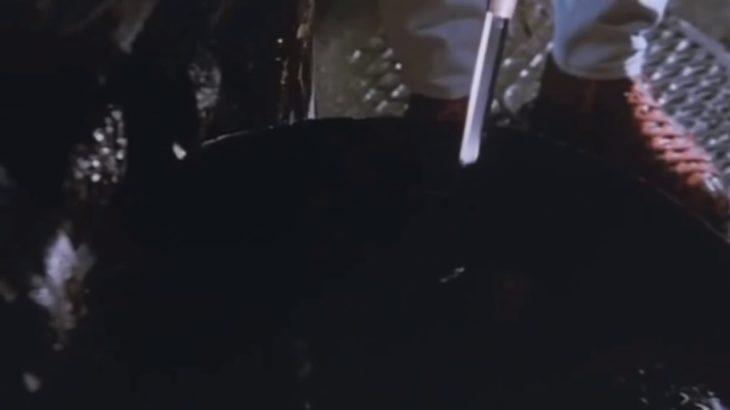 オルゴール(長渕剛)・80年代映画予告