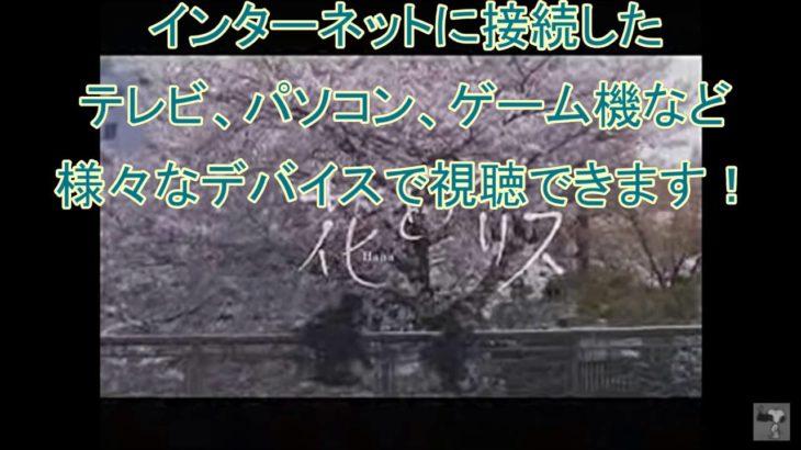 【映画予告】花とアリス