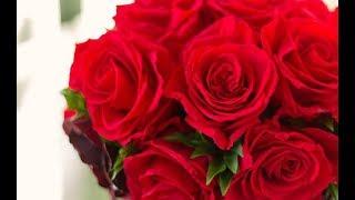 【感動】大きなバラの花束 【泣ける話】